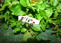 How To Dry Fresh Mint (Homemade)